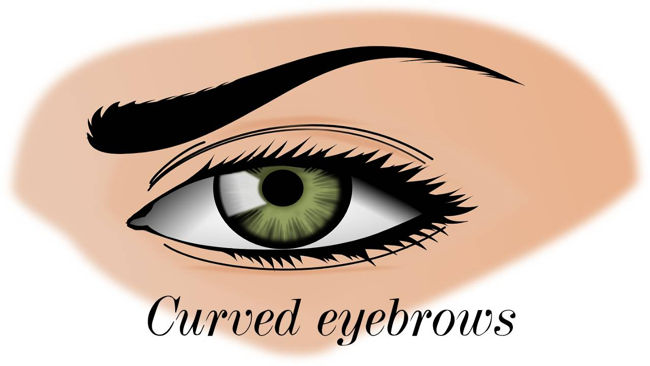 Curved eyebrows